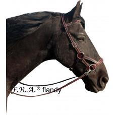 FRA Flandy